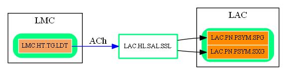 LAC.HL.SAL.SSL.dot.png