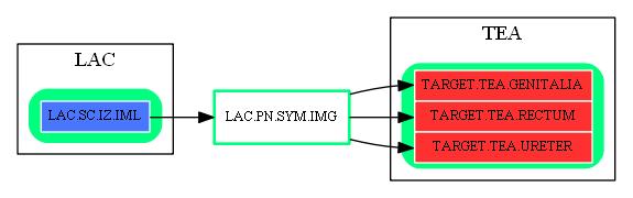 LAC.PN.SYM.IMG.dot.png