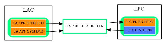 TARGET.TEA.URETER.dot.png